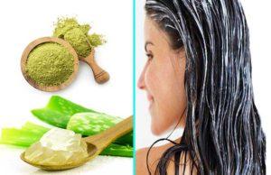 Henna And Aloe Vera - How To Use Aloe Vera For Hair Growth