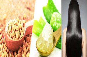Fenugreek And Aloe Vera for hair growth-How To Use Aloe Vera For Hair Growth