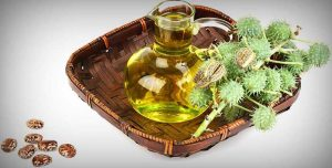 What Is Castor Oil? - How To Use Castor Oil And Aloe Vera Gel For Hair Growth