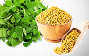 Fenugreek seeds for hair regrow, How To Stop Hair Loss And Regrow Hair Naturally