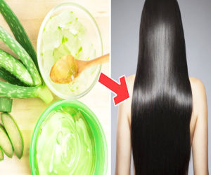 Natural Aloe vera for hair