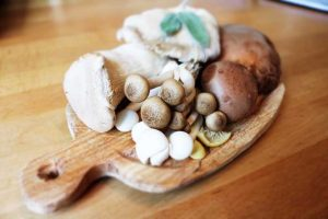 Mushrooms That Boost The Immune System