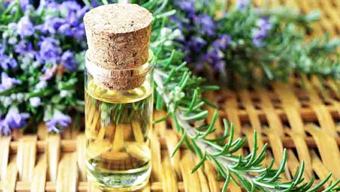 Rosemary - 9 Tricks For How To Hair Growth Fast