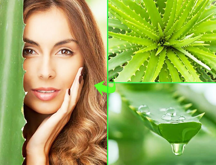 Aloe Vera Face Mask DIY - Benefits Of Aloe Vera On Face Overnight