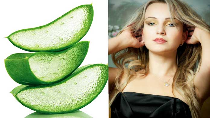 Benefits Of Aloe Vera Gel - benefits of aloe vera on face overnight
