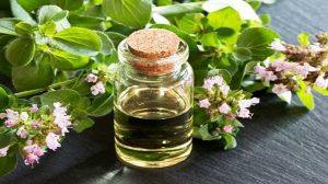 Oregano Oil - Home Remedies For Herpes