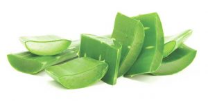 Aloe Vera- Home Remedies For Herpes