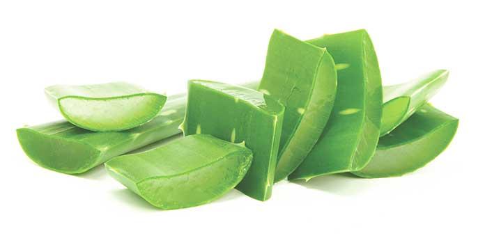 Aloe Vera - Aloe Vera Gel Hair Growth - Home Remedies For Herpes