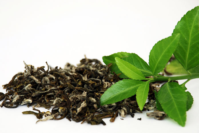 Green Tea - Facts About Green Tea