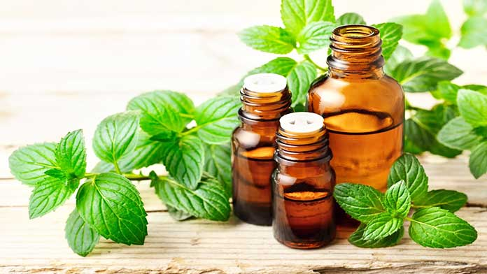 Peppermint Oil - (cold sores lips) 7 Remedies For How To Get Rid Of Cold Sores On Lips Overnight