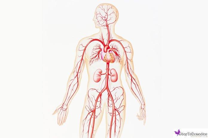 atherosclerosis treatment