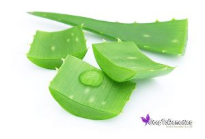 How To Include Aloe Vera In Your Diet?