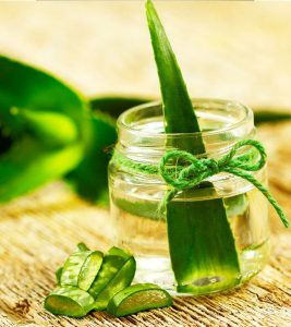 Seven Reasons To Use Aloe Vera For Diabetes - Aloe Vera May Improve Blood Sugar Control In Type 2 Diabetes