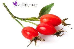 For Hair - Rosehip Seed Oil