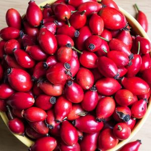For Good Health -Benefits Of Rosehip Seed Oil