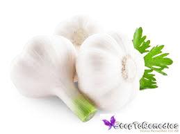 garlic for hair growth reviews