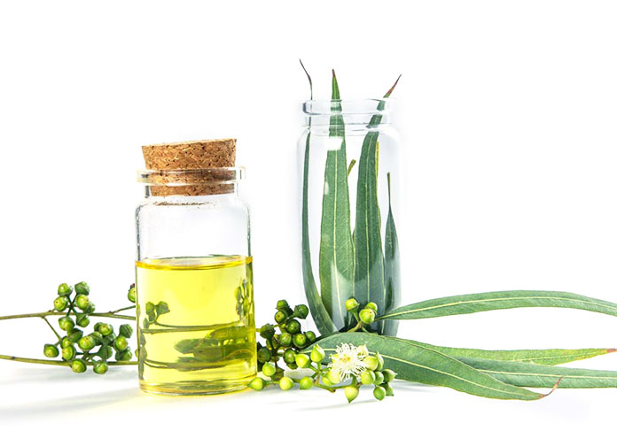 Reviews: Eucalyptus Oil For Hair growth