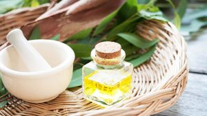 Eucalyptus Oil In The Household - Eucalyptus Oil For Skin