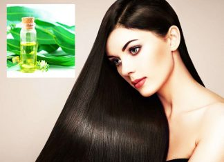 Eucalyptus Oil For Hair Growth