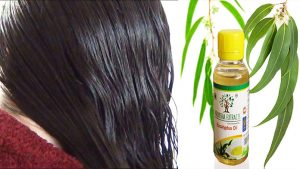 Soothes Itchy Scalp - Eucalyptus Oil For Hair