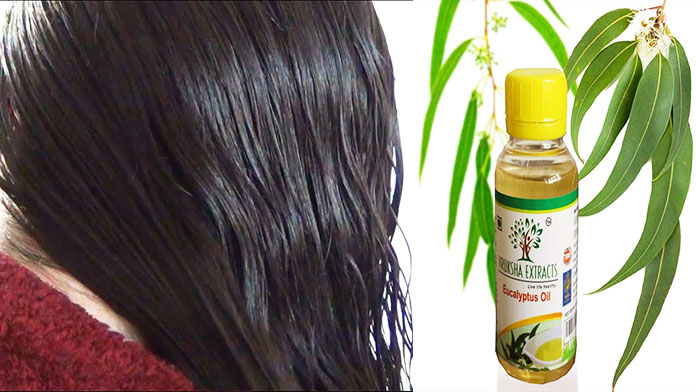 Soothes Itchy Scalp - Eucalyptus Oil For Hair Growth