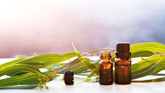 Eucalyptus Oil For Skin