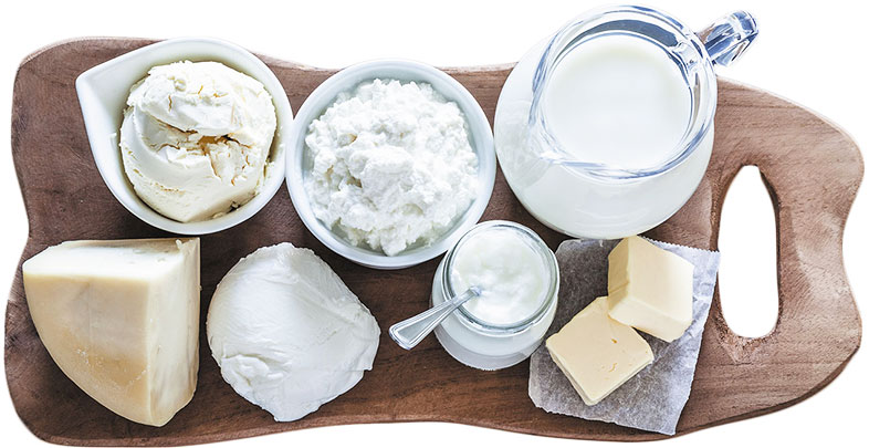 Dairy Products - pregnancy nutrition